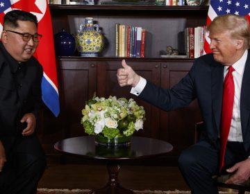 President Donald Trump meets with North Korean leader Kim Jong Un on Sentosa Island, Tuesday, June 12, 2018, in Singapore. (Evan Vucci/AP Photo)
