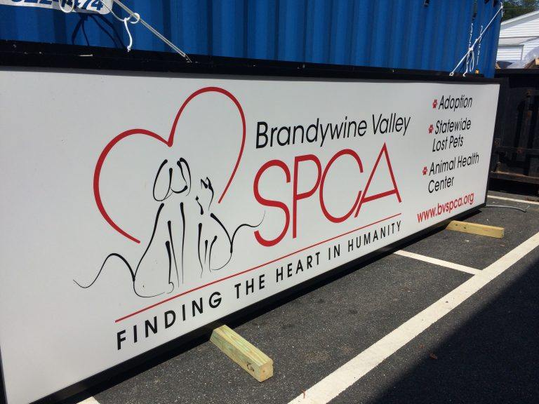 Brandywine Valley SPCA has shelters in West Chester, Pennsylvania, New Castle and Georgetown, Delaware. (Shirley Min/WHYY)