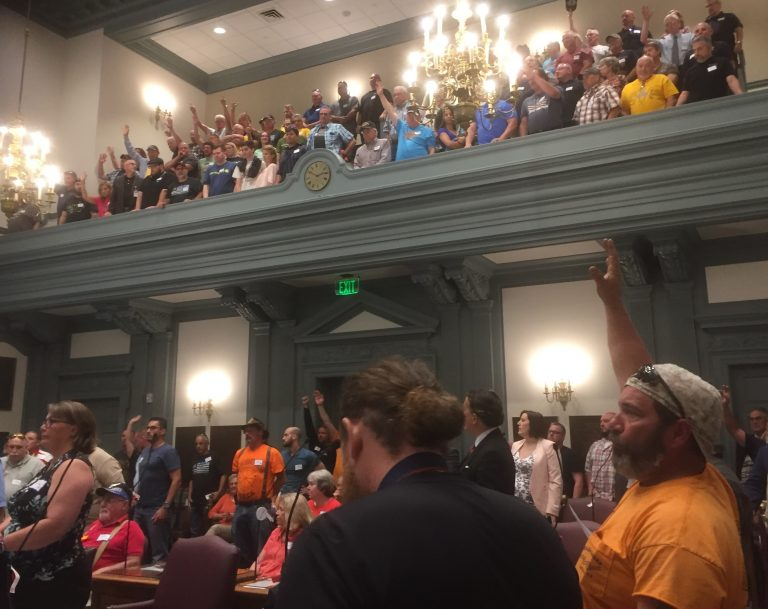 Gun supporters filled the Senate chamber of Legislative Hall in Dover Wednesday to oppose a bill banning some assault weapons. (WHYY/Zoe Read)