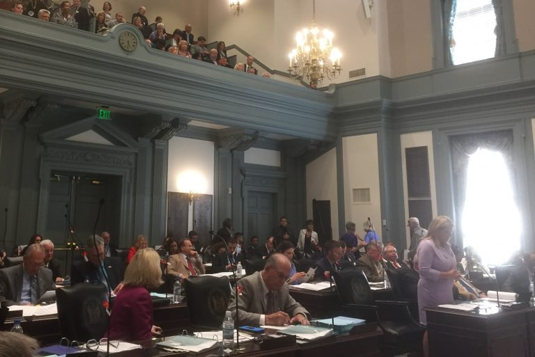 The General Assembly voted to pass an Equal Rights Amendment. (WHYY/Zoe Read)