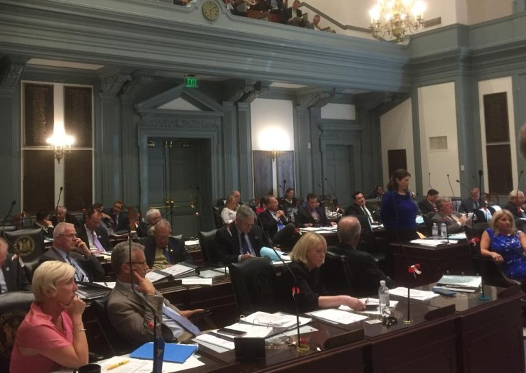 Members of the Delaware House discuss the FY 2019 budget bill, which was approved surprisingly  early. (Zoë Read/WHYY)