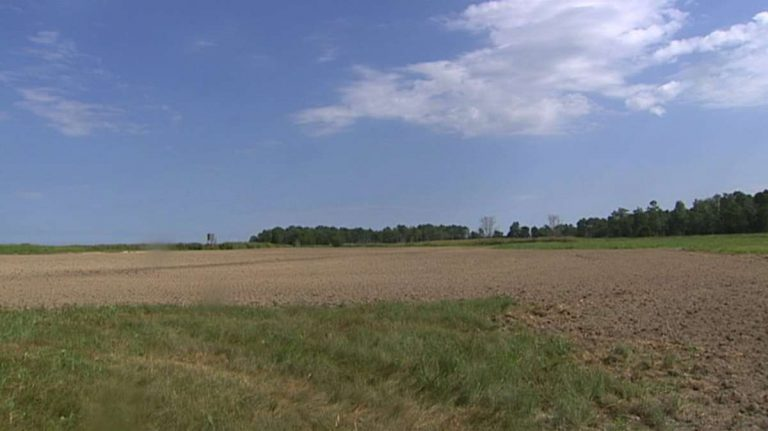 In hopes of getting farmers some financial relief from the loss of early-season crops, Delaware Agriculture Secretary Michael Scuse has filed an emergency disaster declaration with the USDA's Farm Service Agency. (WHYY file)