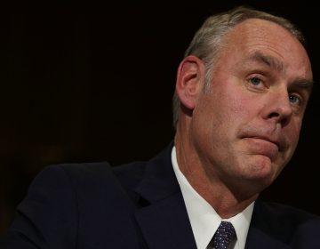Interior Secretary Ryan Zinke at his confirmation hearing last year. (Alex Wong/Getty Images)