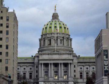 Since 2016, Pennsylvania lawmakers have been trying to move $200 million from a medical malpractice insurer into the general fund. A federal judge has again blocked the move. (Kevin McCorry/WHYY)