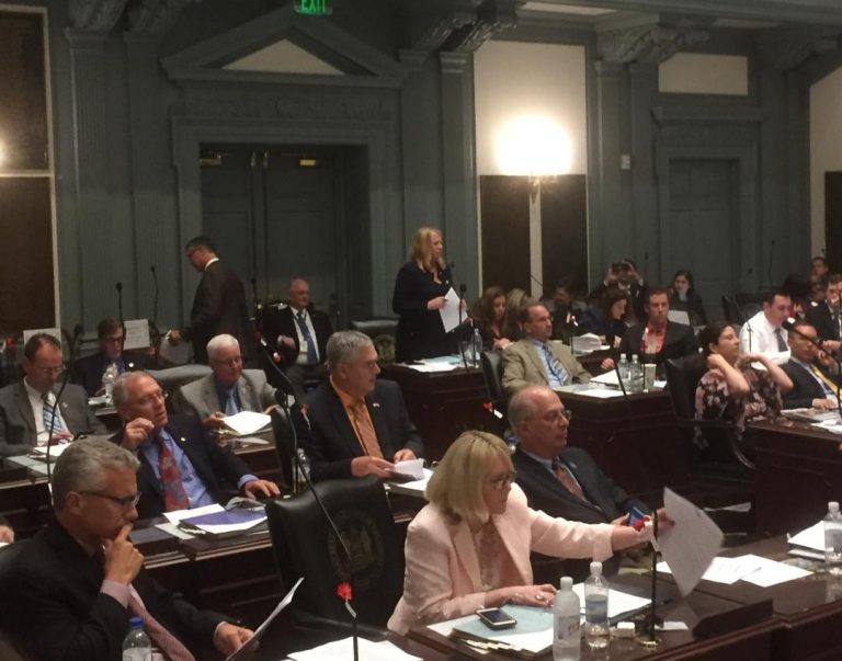 Efforts to legalize marijuana for recreational use were defeated in the Delaware House Wednesday evening. (Zoë Read/WHYY)
