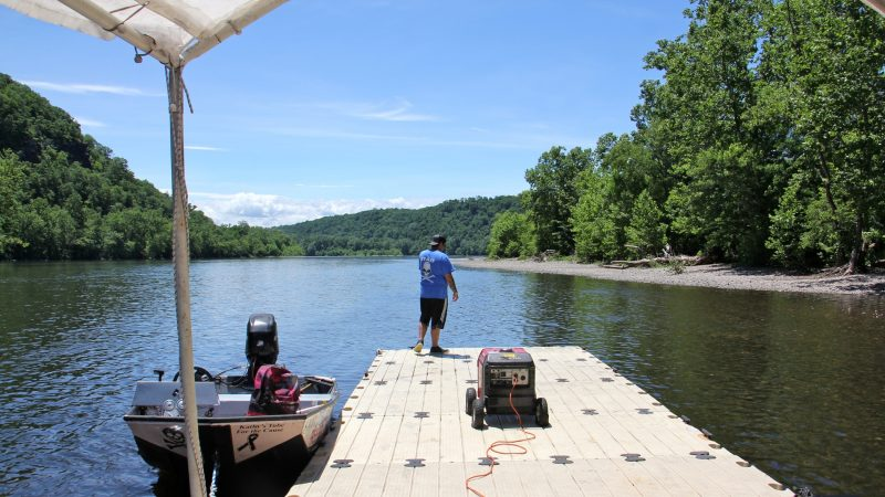 It's just another day at the office for Mathew Crance, who runs Delaware River Tubing and The Famous River Hot Dog Man with his father and three brothers. (Emma Lee/WHYY)