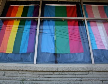 Flags hang in the windows of the headquarters of Feminist Apparel in Somerdale, New Jersey. (Emma Lee/WHYY)