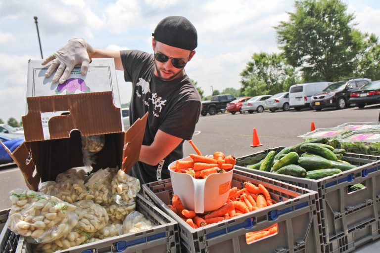 A volunteer stocks garlic on a food giveaway line in Warminster, Pa. (Kimberly Paynter/WHYY)