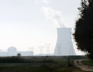 A large cooling tower and other buildings at the Salem nuclear power plant known as Artificial Island can be seen near a farm in Lower Alloways Creek Township, N.J. The project calls for connecting Delaware's electric grid to powerlines adjacent to the plant via a 230-kilovolt transmission line buried in the sediment underneath the Delaware River. (AP Photo/Mel Evans)