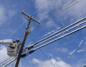 Currently, the federal government has jurisdiction over attachments to telephone poles in Pennsylvania. A proposal from the state Utility Commission would change that. (AP Photo/John Flavell)