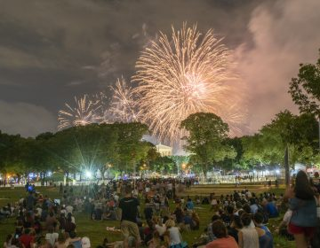 Spectators watch fireworks from Von Colln Athletic Field.