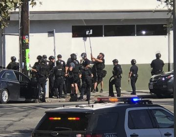 Police officers use a mirror to see inside a Trader Joe's store in the Silver Lake neighborhood of Los Angeles on Saturday. Police believe a man involved in the standoff with officers shot a young female and his grandmother before firing at officers during a pursuit, then crashing outside the supermarket and running inside the store. (Christian Dunlop/AP)