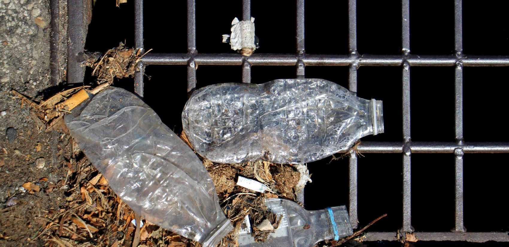 Plastic bottles accumulate on the grate of a storm drain. More and more plastic bottles like these are ending up at the city's sewage treatment facilities, where they are separated and sent to a landfill.(Emma Lee/WHYY)