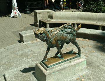 Rittenhouse Square's famous goat statue,