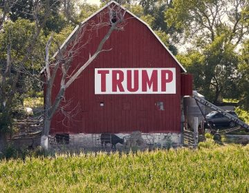 Corn grows in front of a barn carrying a large Trump sign in rural Ashland, Neb., Tuesday, July 24, 2018. The Trump administration announced Tuesday it will provide $12 billion in emergency relief to ease the pain of American farmers slammed by President Donald Trump's escalating trade disputes with China and other countries. (AP Photo/Nati Harnik)