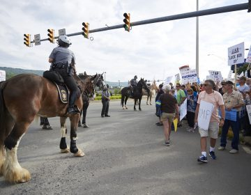 Police on horses gather a crowd of protesters towards the sidewalk on Highland Park Boulevard in Wilkes-Barre, PA. Approximately 300 protesters showed up on August 2, 2018, outside of the Make America Great Again rally. (Natalie Piserchio for WHYY)