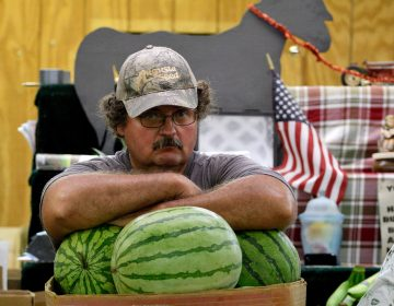 A vendor rests his arms on the melons at a produce stand at Zern's Farmers Market in Gilberstville, Pa.