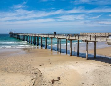 At the Ellen Browning Scripps Memorial Pier in southern California, researchers logged the warmest sea surface temperature in 102 years. (Tim Buss/Flickr)