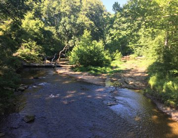 White Clay Creek runs through New Castle County's largest state park. (Mark Eichmann/WHYY)
