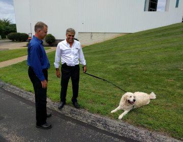 Lou Barletta talks with Hamill Executive Bill Bretz. Reilly looks on. (Chris Potter / 90.5 WESA)