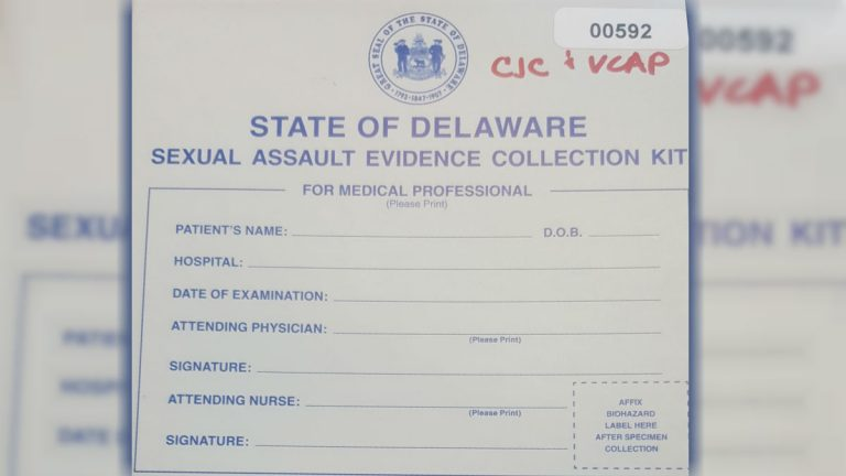 Delaware has tested nearly 900 rape kits that had languished, untested, in police stations and hospitals -- some for more than three decades.  (Courtesy of Delaware Criminal Justice Council)