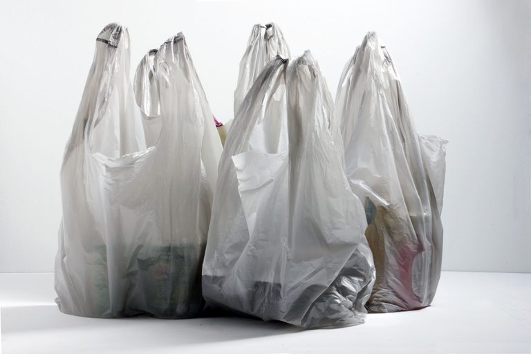 Public hearing held in Albany over plastic bag ban as stores phase out single-use