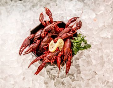 Louisiana crawfish caught in waters in and around Berlin are on display at Fisch Frank fish restaurant in Berlin. They are an invasive species and authorities recently licensed a local fisherman to catch them and sell them to local restaurants. (Carsten Koall/Getty Images)