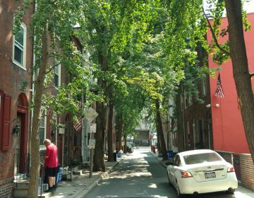 The 100 block of Mole Street -- virtually all of it — in Center City. (Jake Blumgart/PlanPhilly)