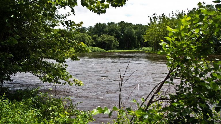 Delaware Water Gap. (Kim Paynter/WHYYNews)