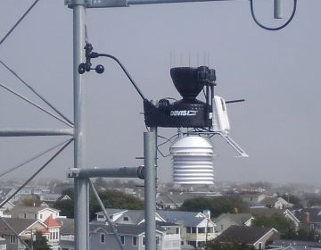 Avalon's new weather station is mounted high above rooflines for accurate information (Borough of Avalon)