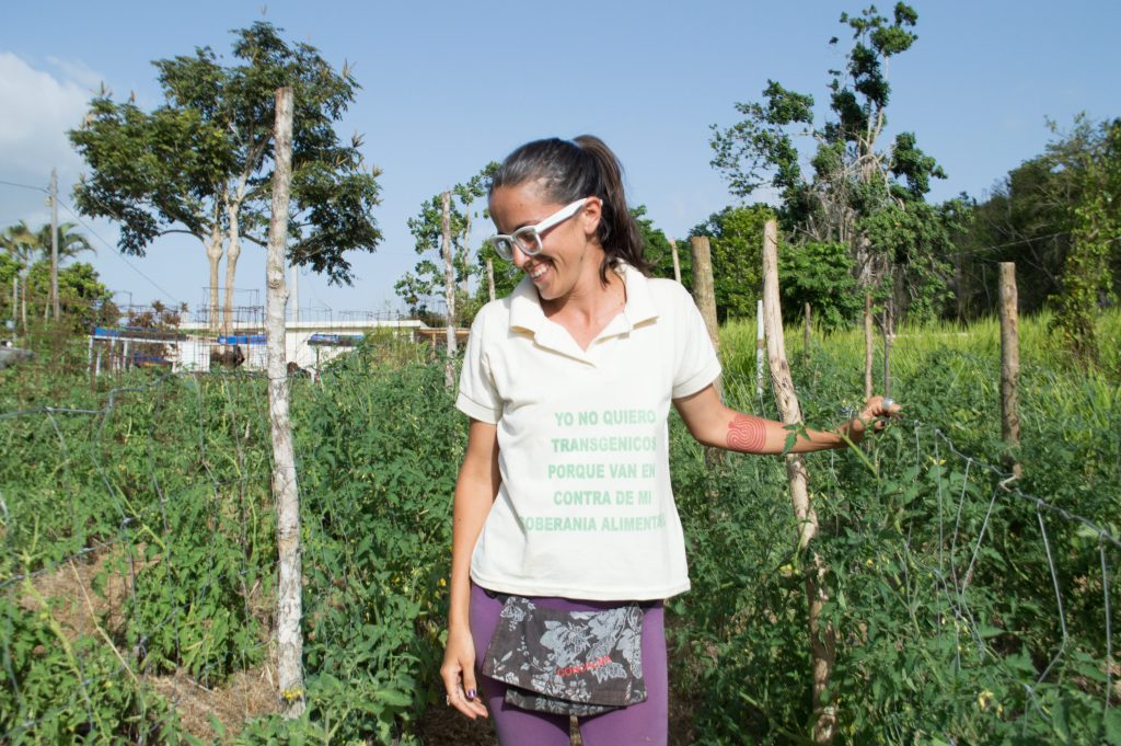 Daniella Rodriguez Besosa on her sustainable farm in Aibonito. (Paige Pfleger/for WHYY)