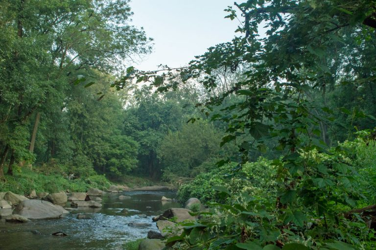 Grounds along the Tacony Creek  in Northeast Philadelphia will now be open to the public after Natural Lands, a conservation group, invested $500,000 to create a conservation easement that preserves 49 acres of the Friends Hospital property. (Mae Axelrod / Natural Lands)