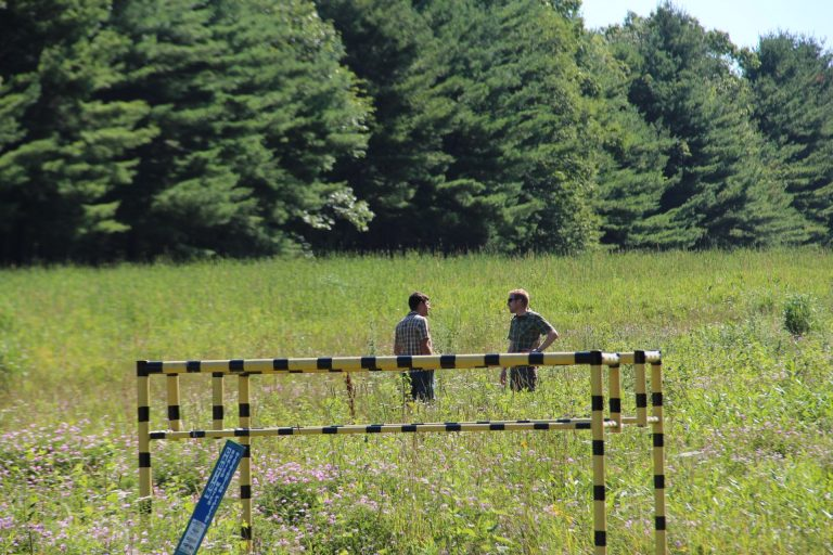 DCNR forester Ben Gamble, left, and Kelly Sitch, right, an ecologist for the agency, on a pipeline right-of-way in the Tiadaghton State Forest. (Reid R. Frazier/Allegheny Front)