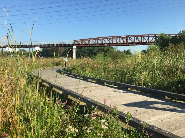 An elevated portion of the Markell trail scene from the boardwalk behind the DuPont Environmental Education Center. (Mark Eichmann/WHYY)