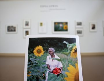 Influential chef Edna Lewis is the subject of an exhibit at Haverford College, which also celebrates the photographs of John T. Hill, who chronicled her rise. (Emma Lee/WHYY)