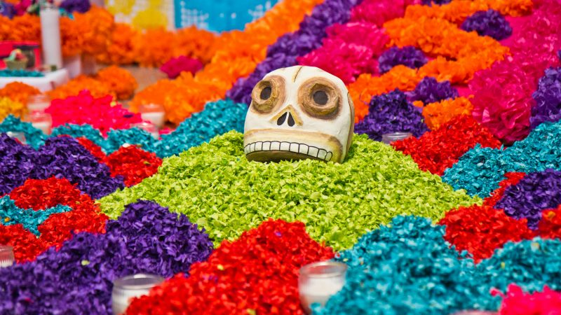 A skull emerges from the paper flower petals at the Day of the Dead altar at the Penn Museum. (Kimberly Paynter/WHYY)