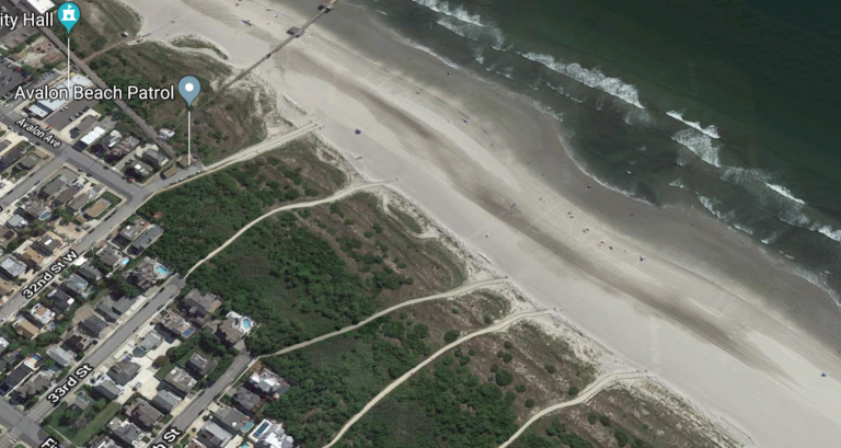 Authorities say dune trees were cut in the area of the 32nd Street beach. (Google image)