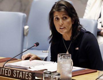 U.S. Ambassador Nikki Haley addresses the United Nations Security Council, Monday, Sept. 17, 2018, at U.N. headquarters. (Richard Drew/AP Photo)