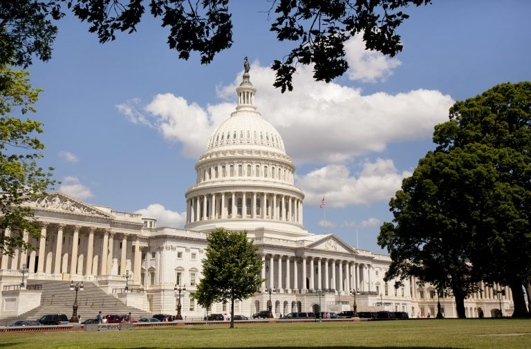 The United States Capitol in Washington D.C.  (Nick Jene/BigStock)