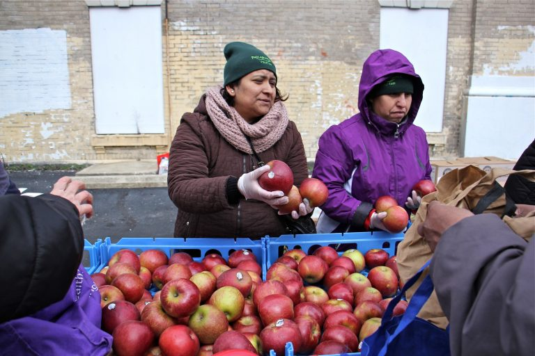 Philabundance volunteers fill bags and boxes with fresh produce during a free farmers market at Lillian Marrero Library in Philadelphia's Fairhill neighborhood, March 14, 2018. (Emma Lee/WHYY)