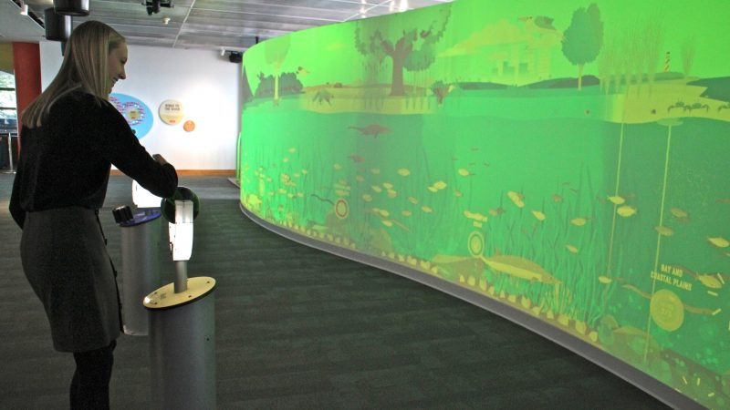 A visitor activates the River Continuum Wall, triggering digitally animated scenes that show the life of the river. (Emma Lee/WHYY)