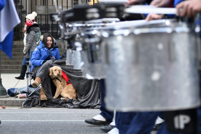 Knoedels the dog watches a drum band march past during the 99th annual Thanksgiving Day Parade in Center City Philadelphia. (Bastiaan Slabbers for WHYY)