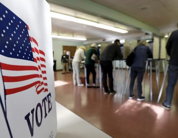 In this file photo, voters cast their ballots, Tuesday, Nov. 6, 2018 (Tony Dejak/AP Photo)