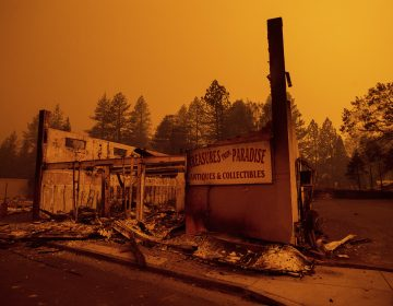 The walls of a scorched antique shop stand on Skyway after a wildfire burned through Paradise, Calif.