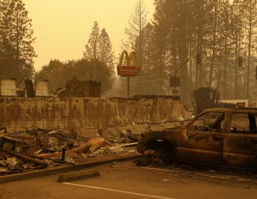 A sign still stands at a McDonald's restaurant burned in the Camp Fire, Monday, Nov. 12, 2018, in the northern California town of Paradise. (John Locher/AP)