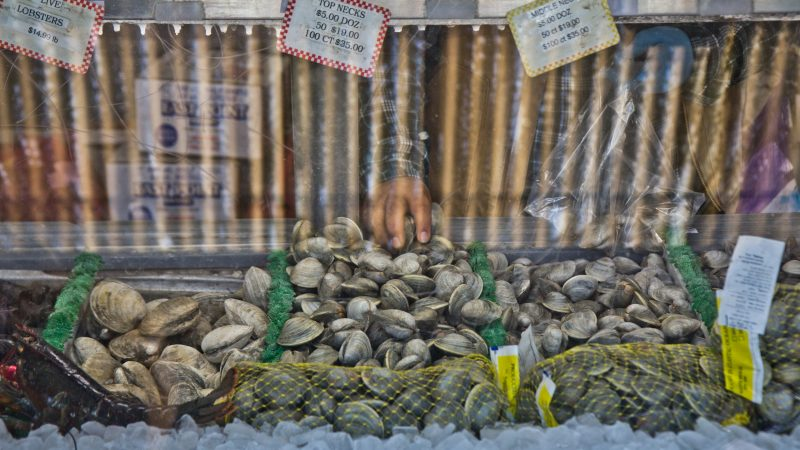 Seafood for sale at Anastasi seafood in the Italian Market. (Kimberly Paynter/WHYY)