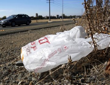 In this Oct. 25, 2013, file photo, a plastic bag sits along a roadside in Sacramento, Calif. (Rich Pedroncelli/AP Photo)