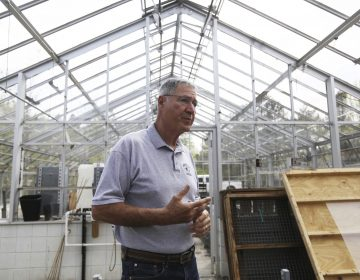 In this May 10, 2018 photo, Ray Angeli gives a tour of the facility next to the greenhouse at NEET center where hemp for research will be grown with a license of the state in Mayfield, Pa. Hemp is coming to Lackawanna County, and students from Lackawanna College's new Sustainable Agriculture program will participate in research. (Jake Danna Stevens/The Times-Tribune via AP)