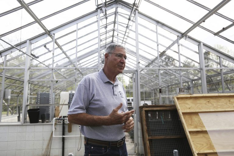 In this May 10, 2018 photo, Ray Angeli gives a tour of the facility next to the greenhouse at NEET center where hemp for research will be grown with a license from the state in Mayfield, Pa. (Jake Danna Stevens/The Times-Tribune via AP)