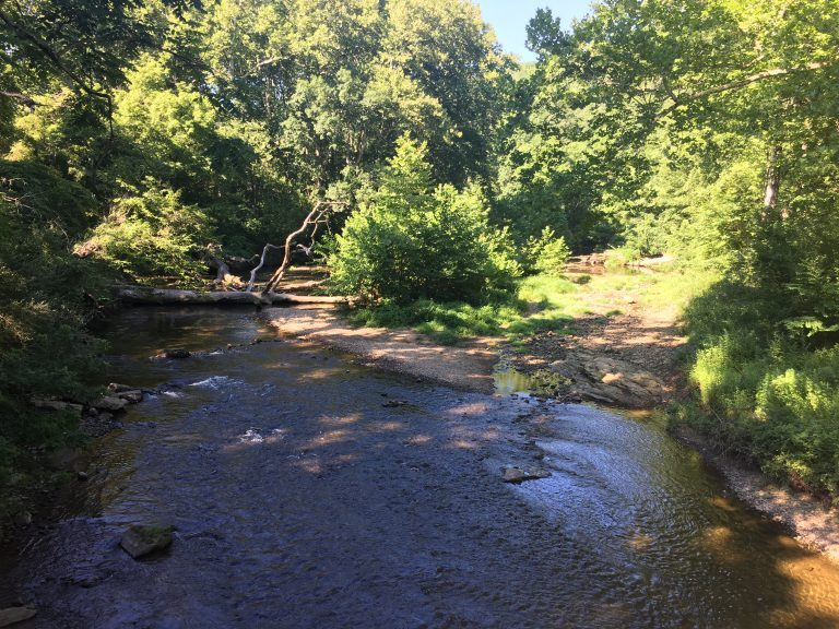 Some of the smallest streams would lose federal clean water protection under Trump's plan. (Mark Eichmann/WHYY)